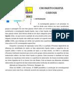 Cromatografia Gasosa (1)