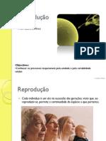 02_Reproducao_parte1