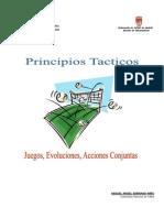 Principios Tacticos. Juegos, Evoluciones, Acciones Conjuntas