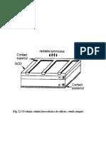 Alina- Celule Fotovoltaice