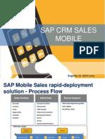 Sap Crm Sales Mobile