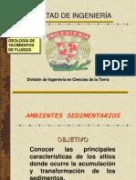 AMBIENTE SEDIMENTARIO DEFINICON