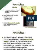 161824_Ascaridíase