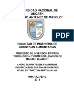 Proyecto de Inversion- Industrias Lacteas 2012-II.