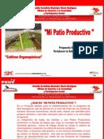 Cultivos Organoponicos Alcaldia