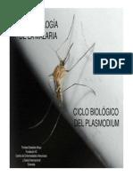Curso Malaria Trinidad Sabalete
