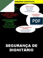 Segurança Dignatários.pdf