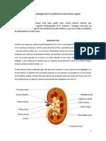 Insuficiencia renal crónica y aguda