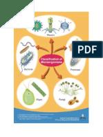 classificationMicro.pdf