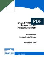 090126_Small_hydropower.pdf