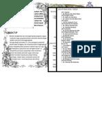 buku program pengawas.doc