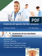 Anatomia Aparato Genital Fem.ppt