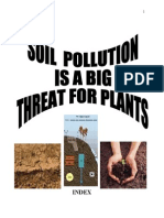ASSIGNMENT ON SOIL POLLUTION.doc