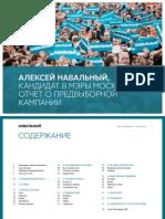 Navalny Report