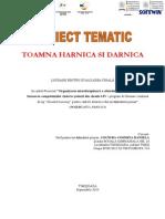 Tema 14 Proiect ,,Toamna Harnica Si Darnica''-Cosmina