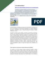 5-Que Es La Geoinformatica