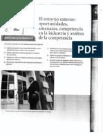 77768_AnalisisdelEntornoExterno.pdf