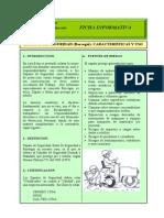 Articles-66070 Ficha Zapatos de Seguridad