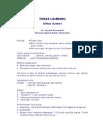 TUKAK LAMBUNG.doc