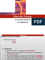 Chapter 4. Muscular_System je.pptx