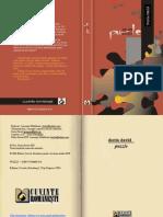 Dorin David-Puzzle.pdf