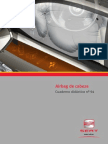 094-airbag-de-cabezapdf749-111005121421-phpapp02