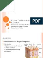 Exame Clc3adnico de Pele e Fc3a2neros1