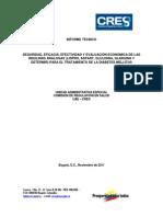 Insulinas Análogas Informe.pdf