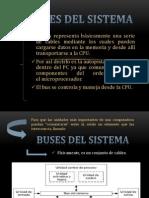 Buses Del Sistema
