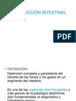 30 Obstruccion Intestinal