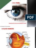 O olho humano e a visão