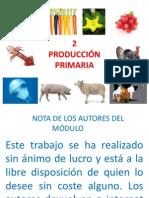 A. V. C. A. 2 PRODUCCIION PRIMARIA.pptx