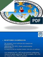 anticolinrgicos-100206172653-phpapp01