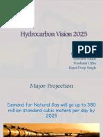 Hydrocarbon vision 2020