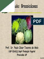 Aula Brassicas2004