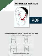 8 Patologia Cordonului Ombilical