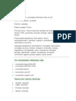 Alfazema - Lavandula officinalis Chaix & Kitt. - Ervas Medicinais - Ficha Completa Ilustrada