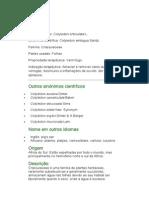 Bálsamo - Cotyledon orbiculata L. - Ervas Medicinais - Ficha Completa Ilustrada