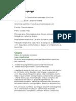 Batata-de-purga - Operculina macrocarpa (Linn) Urb. - Ervas Medicinais - Ficha Completa Ilustrada