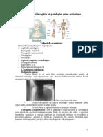 Diagnosticul Imagistic Al Patologiei Osteo-Articulare