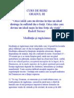 CURS DE REIKI.docx