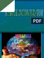 21127278-Mediul-Inconjurator