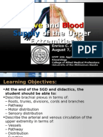 Nerve and blood supply of the upper limb