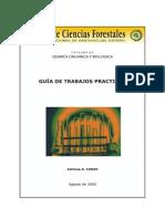 SD FCF 18 Guia Tp Corzo