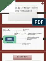 Efectos de lo tóxicos sobre el sistema reproductor