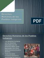 Derechos Humanos de los Pueblos Indígenas