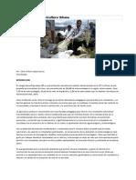 Documento PRAE Agricultura Urbanacolegionuevaesperanza