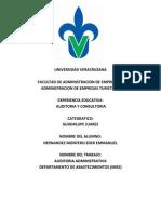 Auditoria Administrativa Imss (Auditoria y Consultoria)