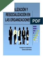 resocializacion.pdf