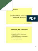 6 Acidos Biliares y Bilirrubina
